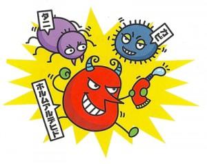 カビやダニがアレルギーの原因