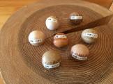 木育広場のボールの種類