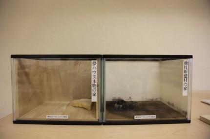 桐の調湿・抗菌実験