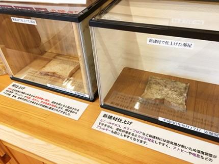 桐材と新建材のカビ実験
